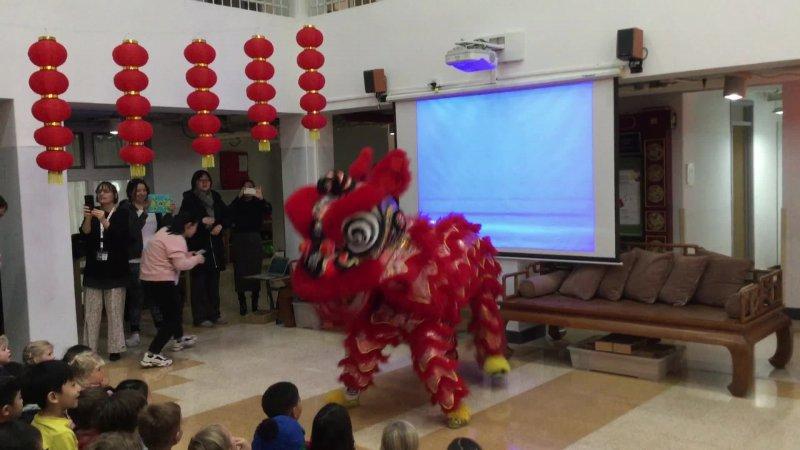 Lion Dance EY